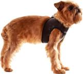 Suņu iejūgs (kaklasiksna) no  mākslīgās ādas