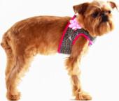 Suņu iejūgs ar puķi (kaklasiksna)