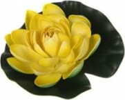 Dekors Ūdensroze dzeltena 19cm