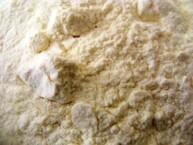 Jogurta pulveris - 50 gr.